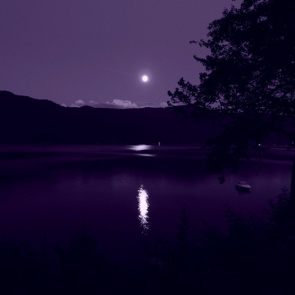 Blue Moon reflected in a lake at night